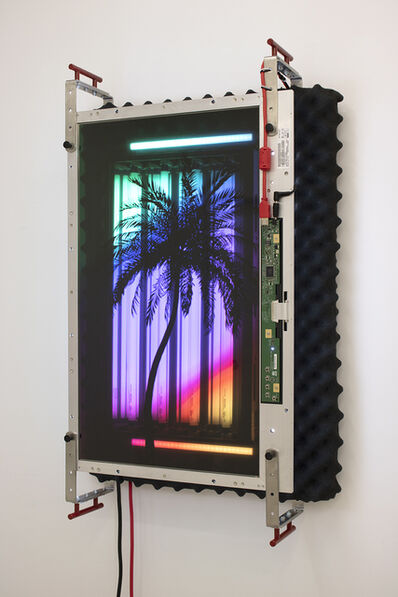 Tabor Robak, 'Grow Light', 2019