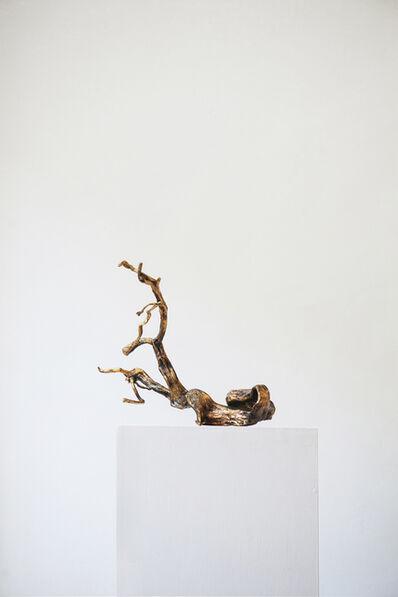 Xavi Muñoz, 'L'escala del paisatge I', 2014