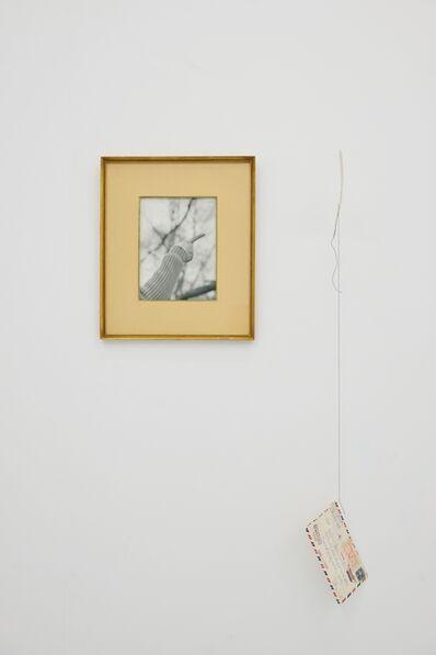 Elena del Rivero, 'Mira una carta Voladora!', 2017