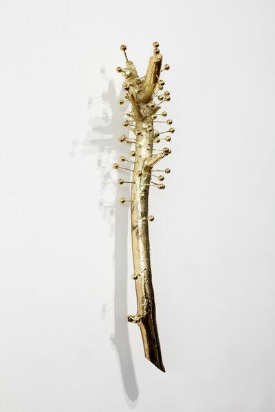 Sanell Aggenbach, 'Medea', 2015