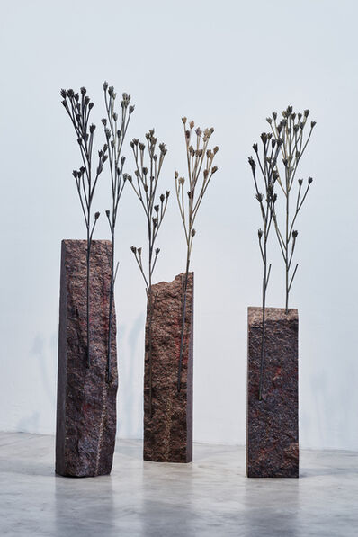 Michele Mathison, 'Kakiebos', 2017