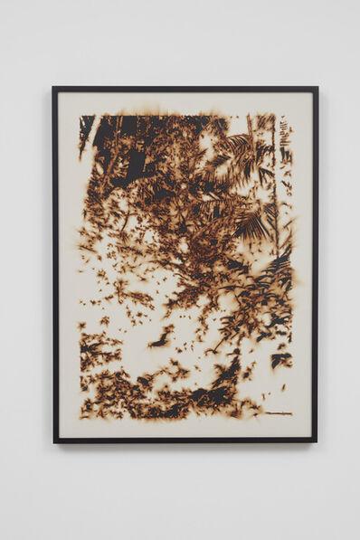 Teresita Fernández, 'Puerto Rico (Burned) 4', 2018