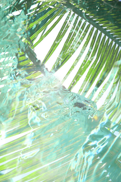 Chris Leidy, 'Palm Pool 2'