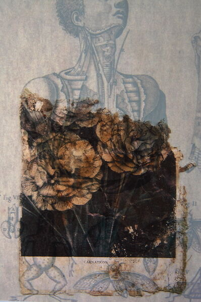 Lien Botha, 'Carnations', 2020