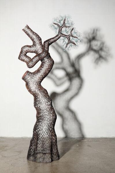 Lee Gil Rae, 'Millennium Pine Tree', 2019