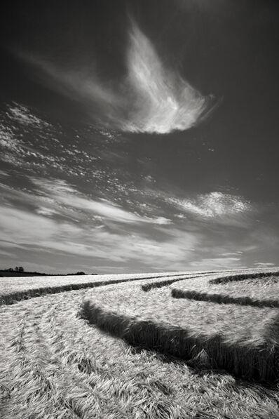 Cara Weston, 'Crop Circle, England', 2014