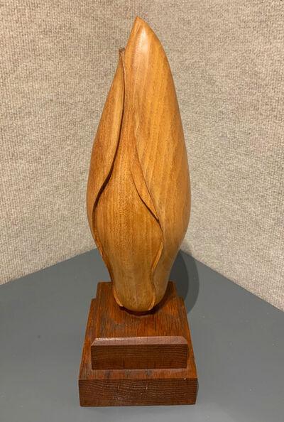 Brett Weston, 'Magnolia Bud', 1927