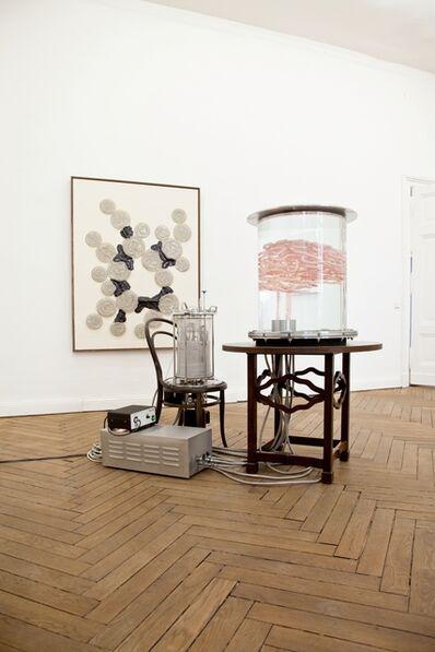 Thomas Feuerstein, 'Pancreas (Alles Fleisch)', 2009-2013