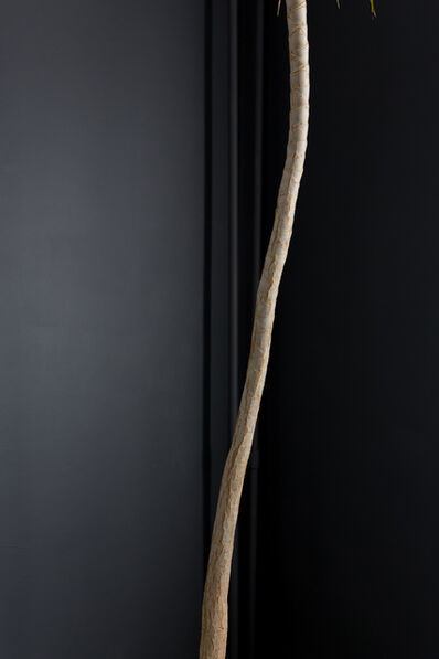 Tricia Capello, 'Blue Palm', 2018