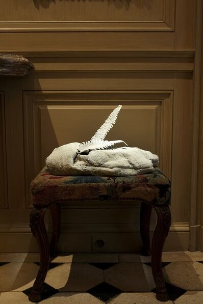 Angelika Markul, 'Angelika Markul, Untitled [Fern] from the Tierra del Fuego series, 2018', 2018