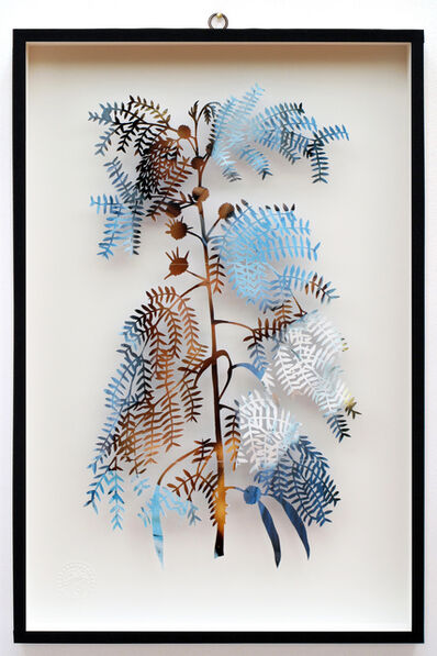Paolo Giardi, 'You Can Learn a Lot of Things From the Flowers - Plant CXXIX - Mimosa - Lui - Maysa', 2014