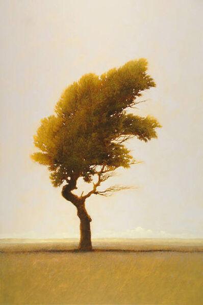Robert Marchessault, 'Mojave Verde', 2011