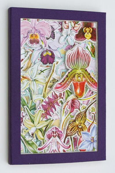 James Allen, 'Orchids', 2020