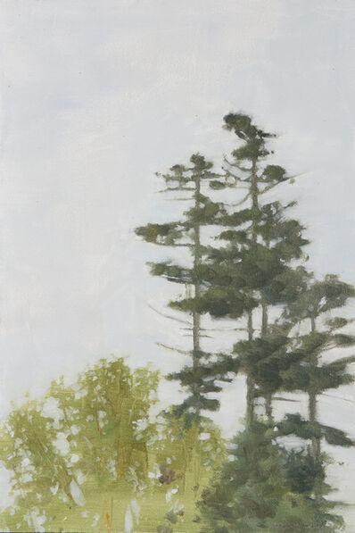 Marilyn Turtz, 'Birch and Spruce in Fog'