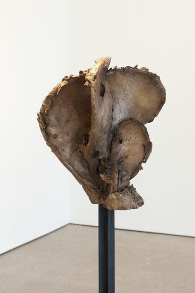 Jean-Luc Moulène, 'Noeud 5.1- varia 02', 2011