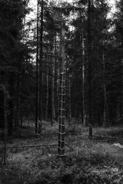 Anna Reivilä, 'Bond 2', 2014