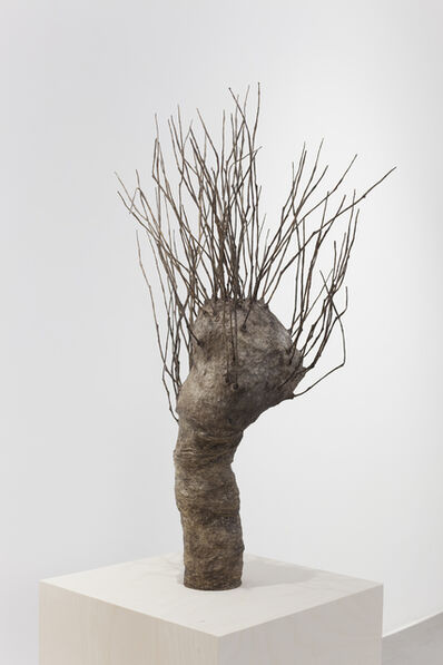 Johanna Karlsson, 'Natur VI/ Nature VI', 2016