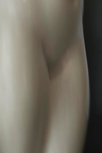 Luca Artioli, 'Roman Statue Study 1', 2016