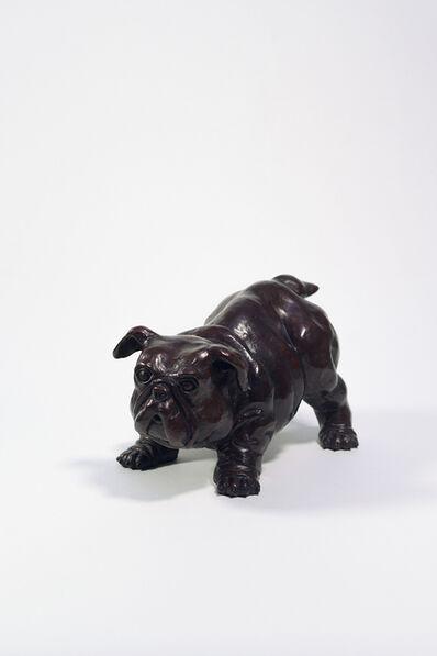 Jean-Michel Pradel-Fraysse, 'Baby Bull Dog', 2020