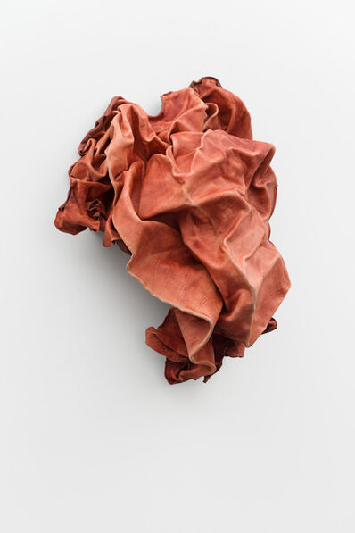Anneliese Schrenk, 'Bruit rosé', 2014