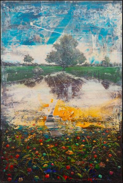 Jernej Forbici, 'Unknow orange dust on daisy flowers', 2019