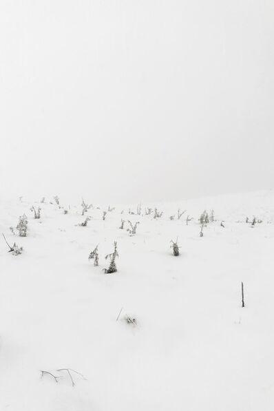 Simone Cametti, 'primitivo: documentazione azione, Pizzo di Sevo, Parco Nazionale dei monti della Laga e Gran Sasso', 2021