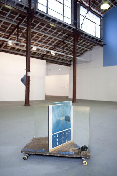 Cabelo, 'ODONTASPIS MACROTA', 2010