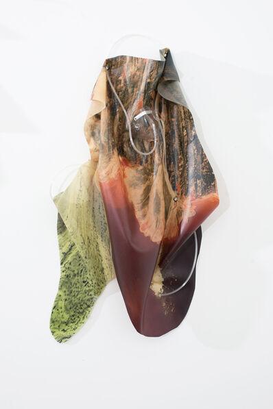 Anouk Kruithof, 'Petrified Sensibilities 02', 2017