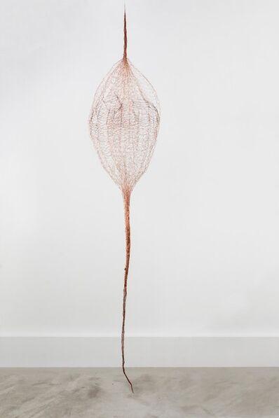 Gjertrud Hals, 'Eir', 2019