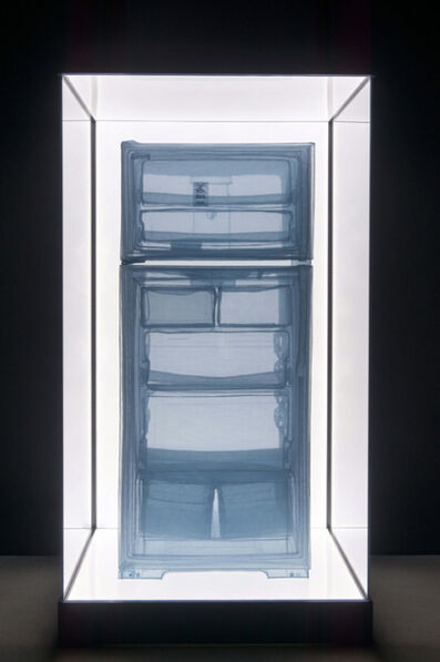 Do Ho Suh, 'Specimen Series: Refrigerator, Apartment A, 348 West 22nd Street, New York, NY 10011, USA ', 2013