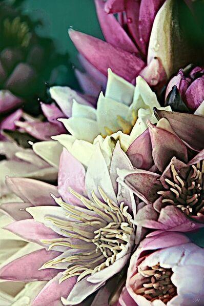 Sabine Wiedenhofer, 'purple lily', 2018