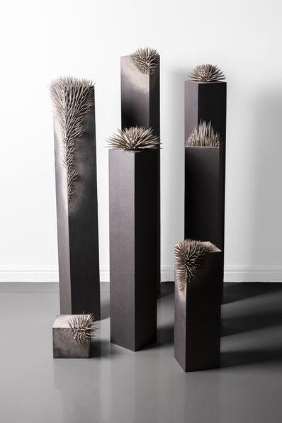 Ernst van der Wal, 'Untitled (Installation View)', 2019
