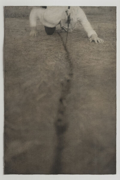 Robert and Shana ParkeHarrison, 'Study for Bloodline', 1995