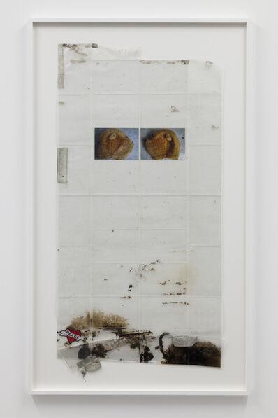 Steve Bishop, 'Mascots (Brown Bear II)'