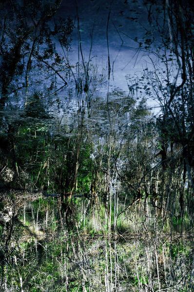 Leslie Gabaldon, 'Wetlands', 2020