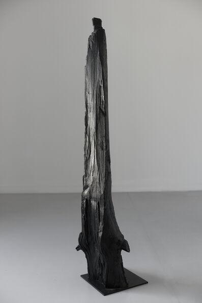 Christian Lapie, 'La terre d'ombre', 2017