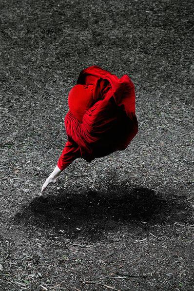 Guilherme Licurgo, 'Desert Rose ', 2014