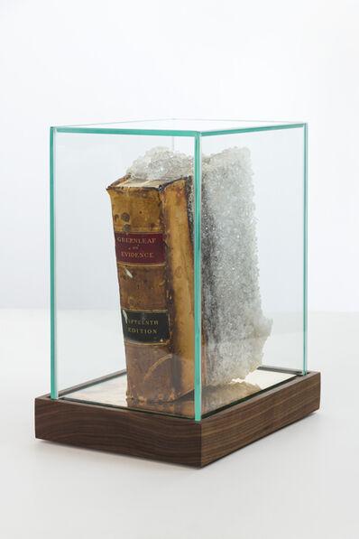 Edgar Arceneaux, 'Greenleaf on Evidence', 2019