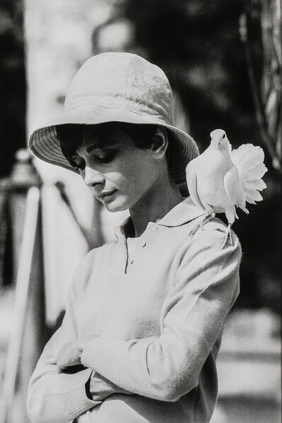 Terry O'Neill, 'Audrey Hepburn with Dove, St. Tropez', 1967-printed later