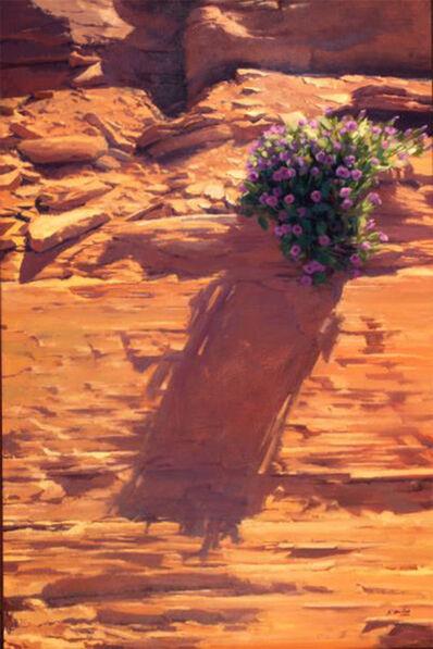 Kate Starling, '4 O'Clock (desert landscape, red cliffs, flowers, Utah, shadows)', 2020