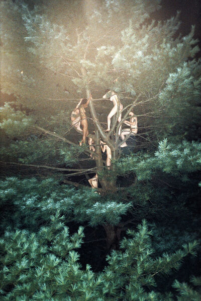 Ryan McGinley, 'Tree #3', 2003