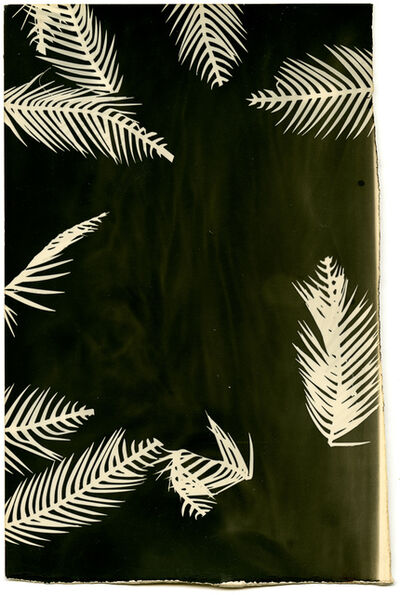 Bruno V. Roels, 'Palmograph #3', 2019