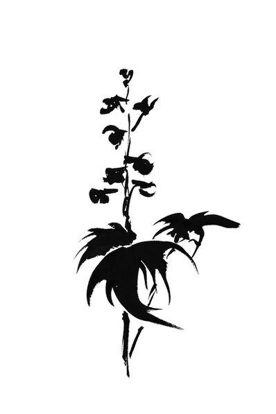 Veronique Gambier, 'Botanical Study · Delphinium #9_Edition 1 of 10', 2019