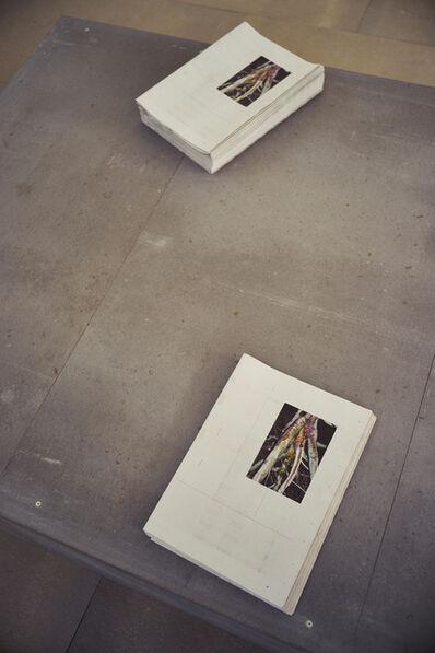 Tobias Zielony, 'The Citizen (Installation view)', 2015