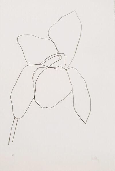 Ellsworth Kelly, 'Cyclamen I ', 1964-1965