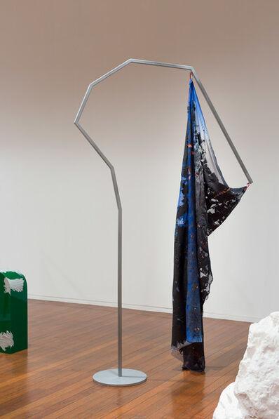 Mikala Dwyer, 'Flags'