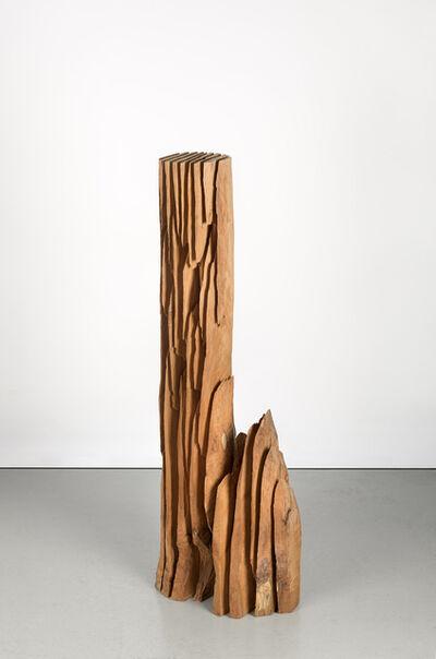 David Nash, 'Tower', 2014