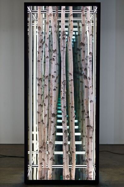 "Anthony James, '40 x 96"" Freestanding Birch Rectangle', 2019"