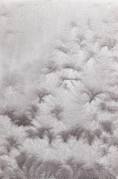 Ty Waltinger, 'Fragile Crystals I', 2013