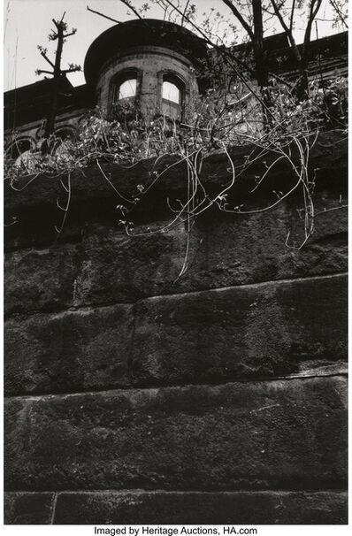 W. Eugene Smith, 'House with Eyes from the Pittsburgh series and Flying Egret from the A Man of Mercy series (two photographs)', 1955-56; 1954